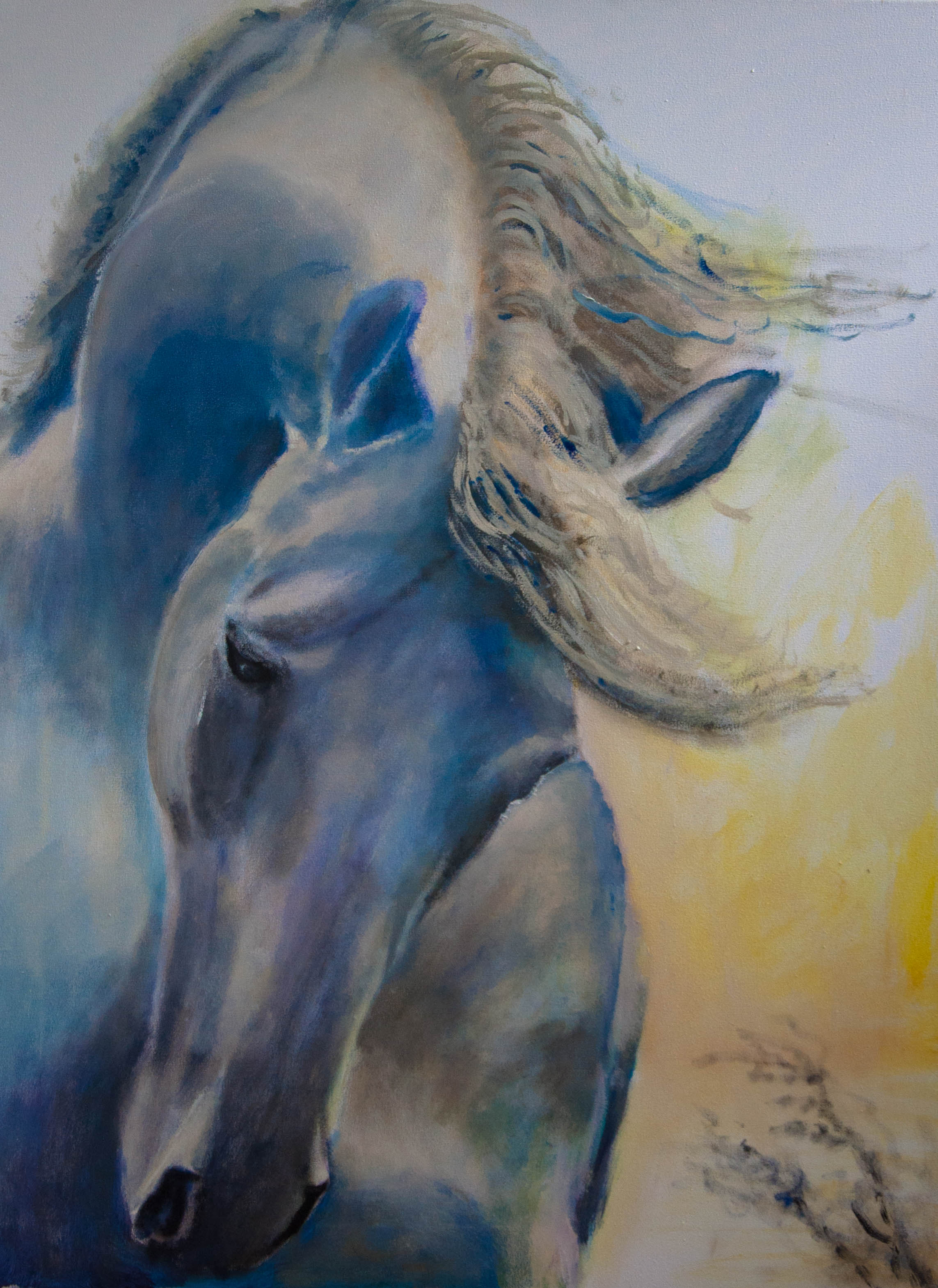 Painting Horse in concentration (2020) Oilpainting on cotton, 80 x 60 x 2 cm For sale